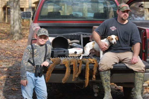 Squirrel Hunting Dogs For Sale In South Carolina