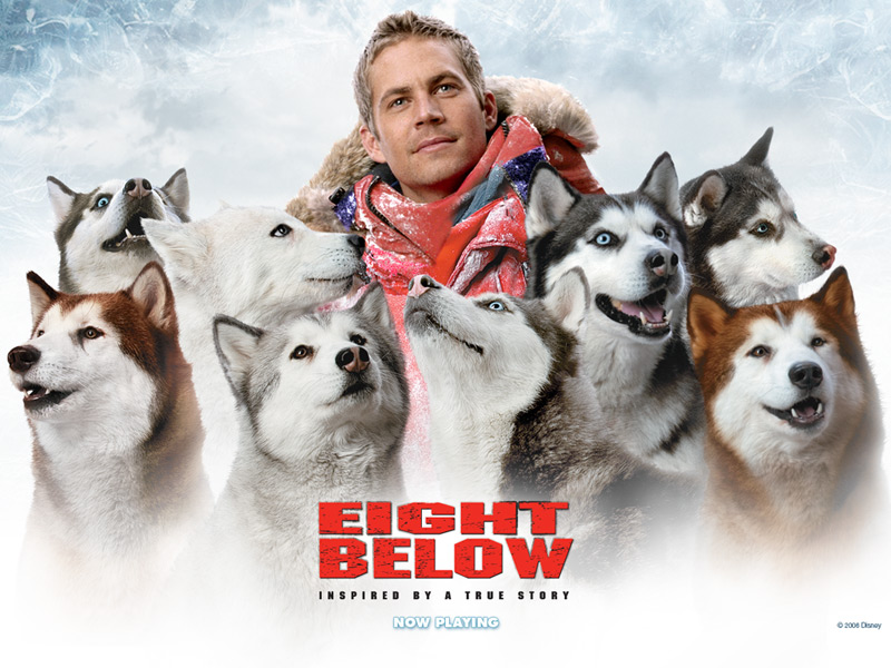 Paul Walker 8 Below