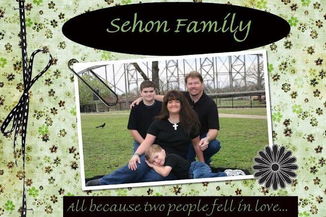 Sehon Family Fun