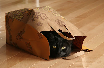 not my cat, or a plastic bag - but you get the idea