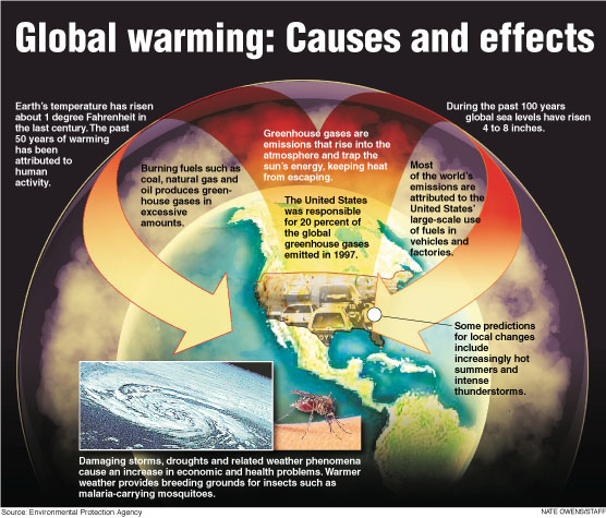 the cause and effects of global Global warming cause and effect essay it is believed people's careless use of fossil fuels are responsible for causing global warming environmentalists say people do not realize the serious effects of their own actions.