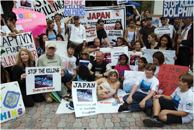 Around the World, Millions of People Want to Save Japan Dolphins!