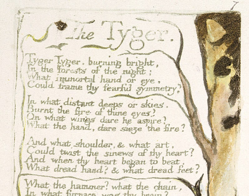 the importance of rhythm in the tyger by william blake The beauty of the supernatural - a william wordsworth poetry analysis will the meter creates a song like rhythm analysis of the tyger by william blake.