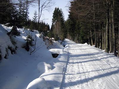 Cesta na Davidovky