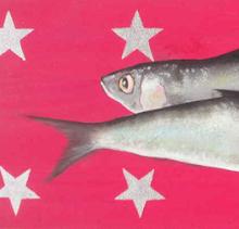 les sardines de Valérie Neige