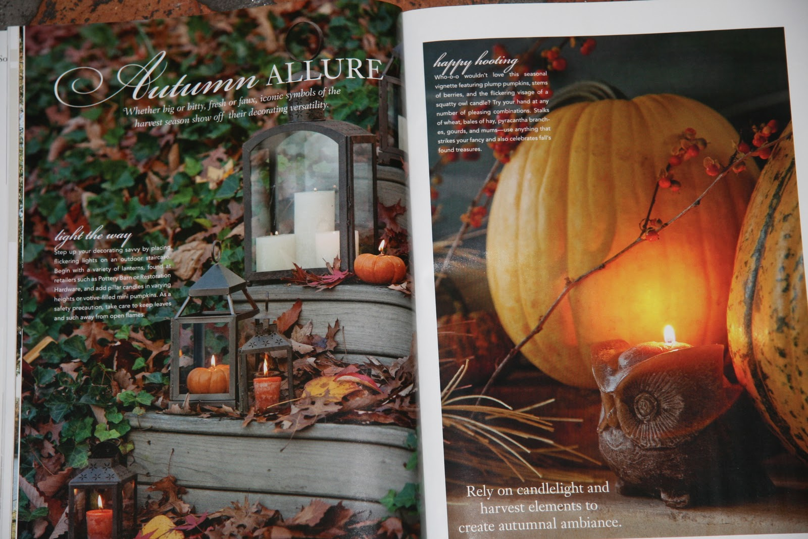 Southern Lady Magazine Recipes Carrot Cake