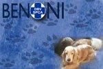 Benoni SPCA Blog