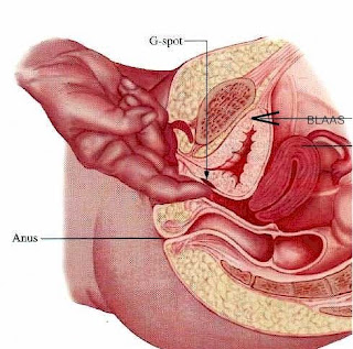 Very bumpy textured vaginal wall? - relationship advice