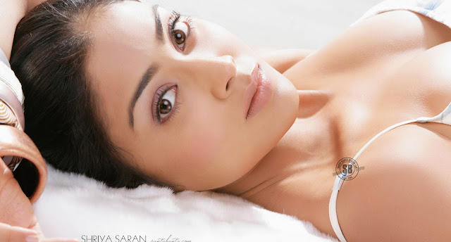 Shriya Saran's Hot Wallpaper