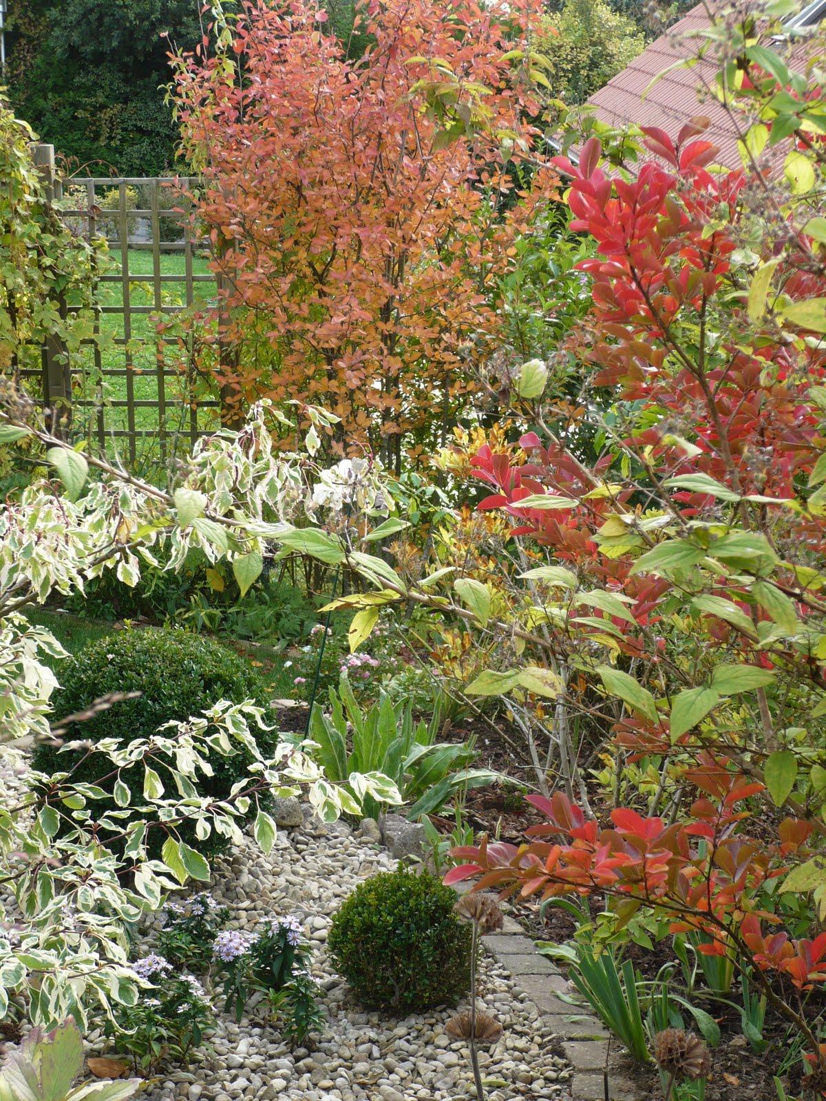 Le jardin des grandes vignes automne en couleurs - Le jardin des grandes vignes ...