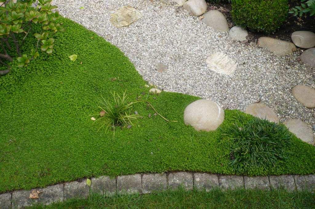 Balades dans de beaux jardins jardin citadin - Le jardin haguenau ...