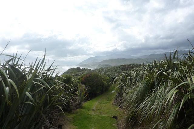 La naturaleza de Nueva Zelanda a veces es salvaje