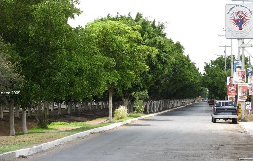 Ciudad Obreg N Villa Bonita