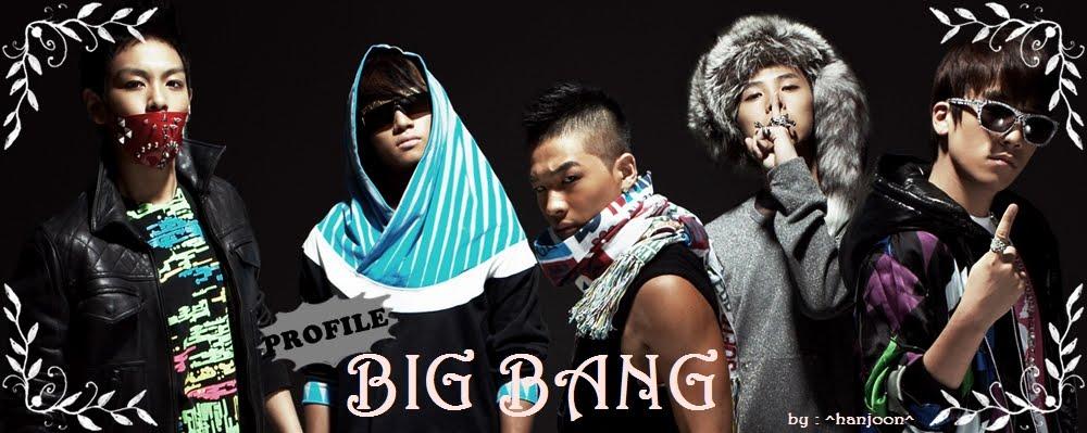 big bang profile