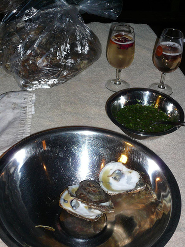 [oysters+and+champers.jpg]