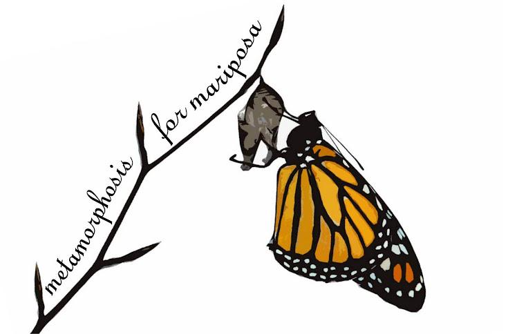 metamorphosis for mariposa