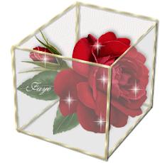 Λουλούδι της ψυχής, χαρισμένο από τον φίλο μου Σκρουτζάκο ...