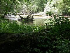 Little Darby Creek