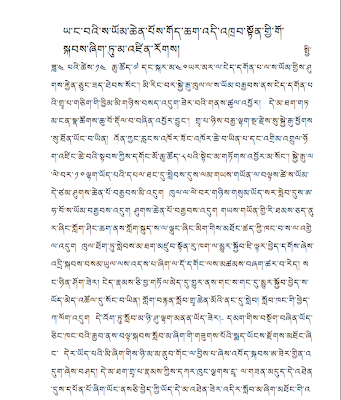 Earthquake in Tibet, Letter from a Tibetan monk in the Earthquake Area