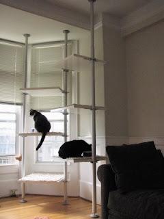 Стойка для кошек