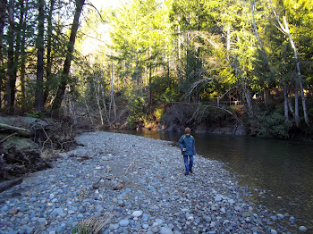 Rex hikes along the Tahuya River
