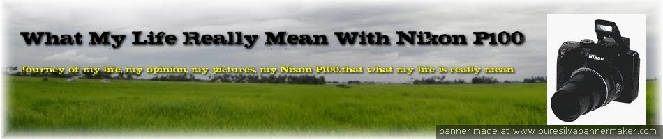 What My Life Really Mean With Nikon P100