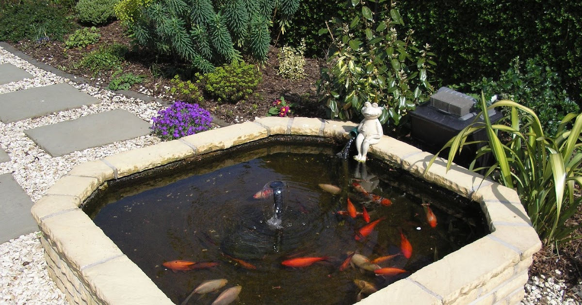 Your building needs answered ask lance the brickie 25 for Koi pond labradors