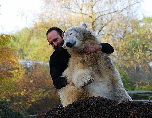 Knut with zookeeper Thomas Doerflein