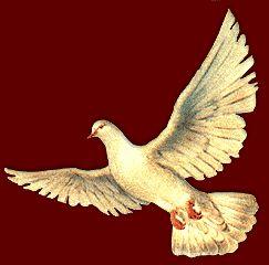 symbol ducha swietego