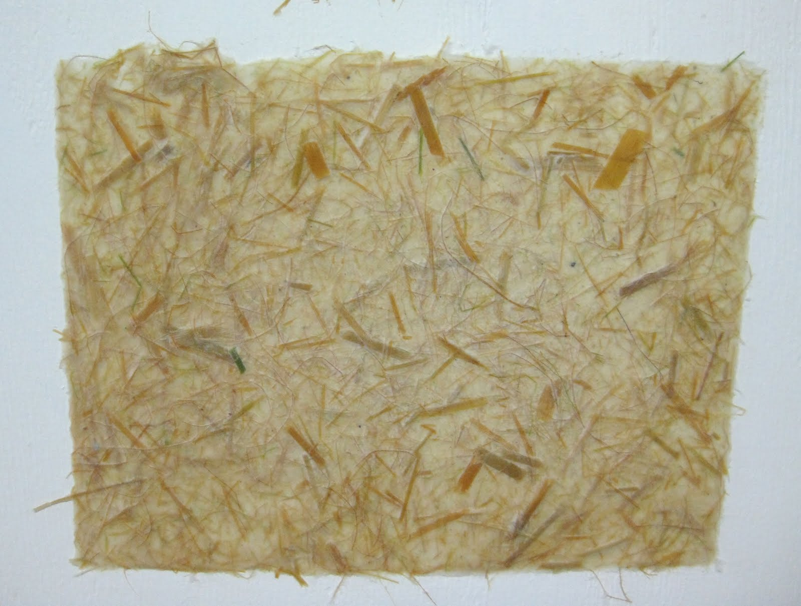 http://4.bp.blogspot.com/_SYY5mekVko4/TLcz2CqSjWI/AAAAAAAAAkQ/s_kz-CDjyM8/s1600/pampasgrassandpawlownia+paper.jpg