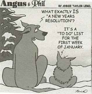 Alternative Affirmations For The New Year...