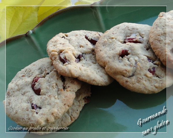 Cookies au pralin et aux cranberries