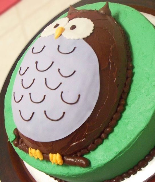 mintagehome Adventures in Cake Decorating the Owl Cake ~ 061510_Cake Decorating Ideas Owls