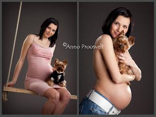 Lapseootus pildid koos lemmikloomaga fotostuudios