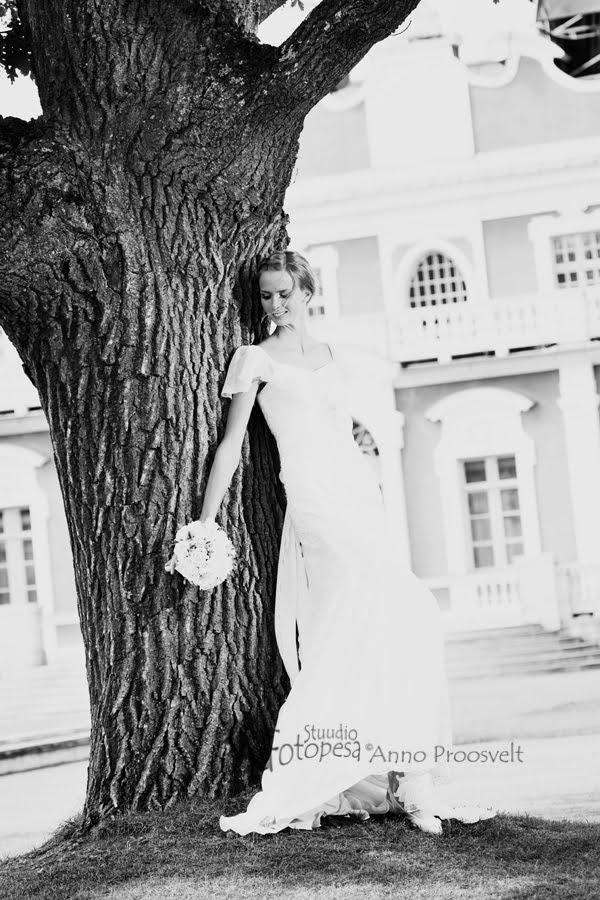 pulmafoto, pruut puu juures Kadrioru lossipargis