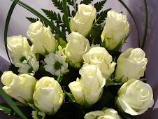 Rosas da Isa