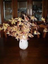 Orquídeas do Pico
