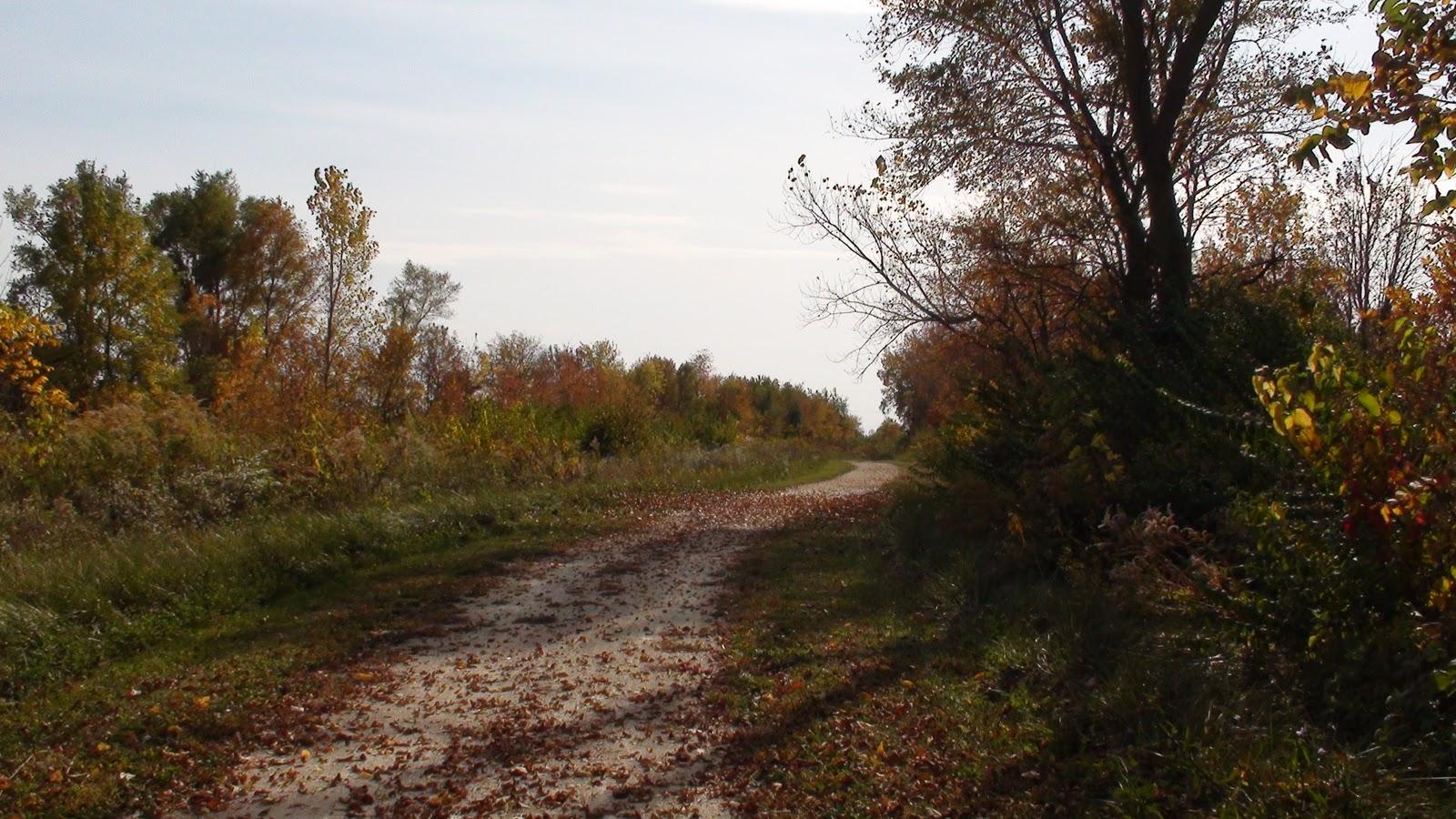Illinois will county manhattan - Wauponsee Glacial Trail Near Manhattan Illinois