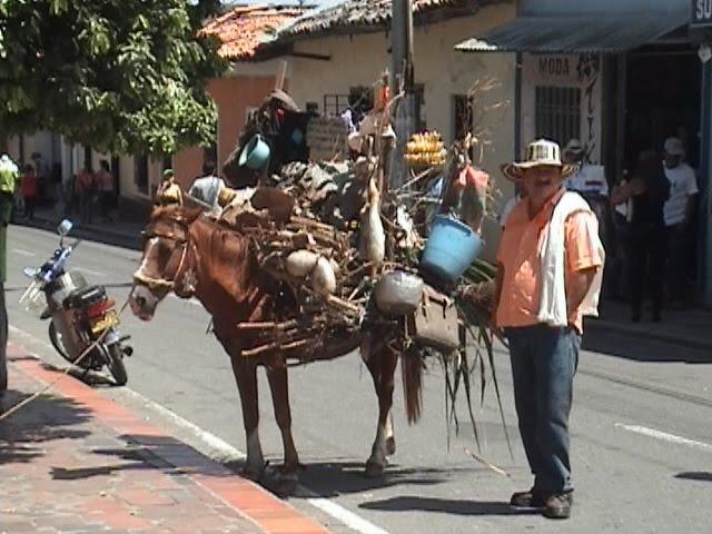 PERSONAJE TIPICO LA REINADO DE CHINACOTA