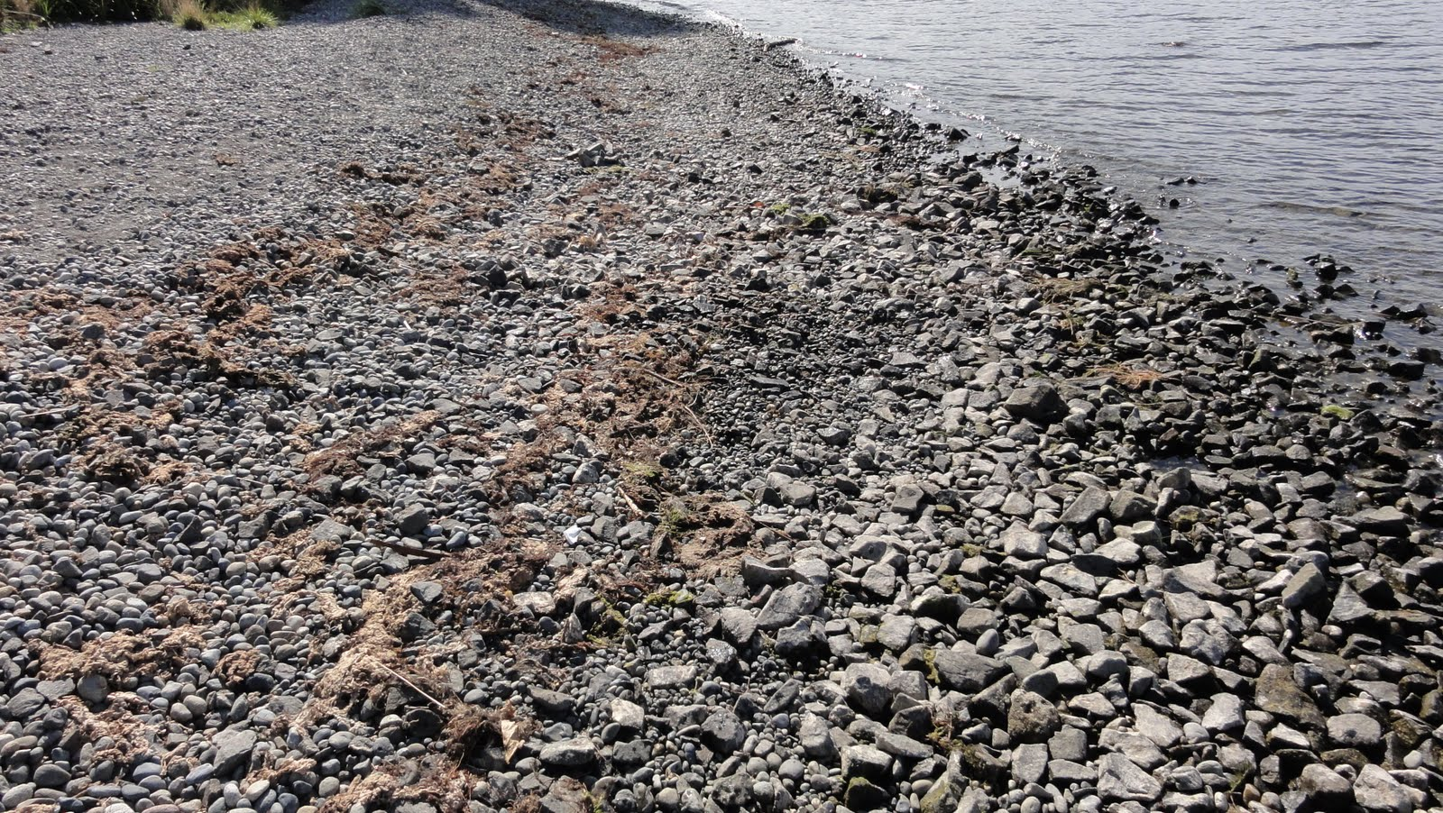 Image shows a rocky beach.