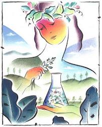 Amor por la quimica