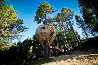 Yellow Treehouse Restaurant Australia Pacific Environments Architects