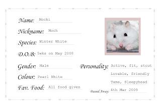 Hamsty hamster world birth certificate birth certificate yadclub Choice Image