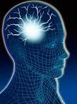 human brain binaural beats