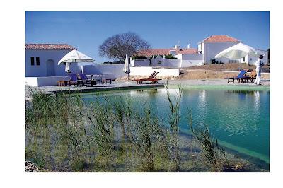 Castro junior arquitetura ecol gica piscinas biol gicas for Piscinas biologicas