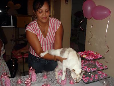 Gata Lili apagando a vela de aniversário