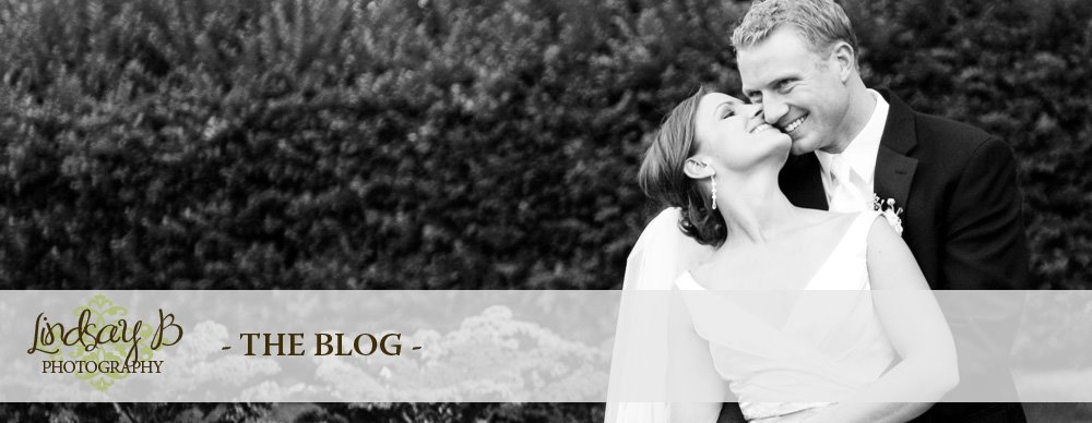 Lindsay B Photography - Denver Colorado Wedding and Portrait Photographer