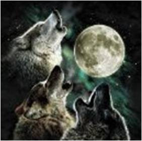 Three Moon Wolf image