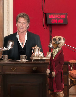 Compare The Meerkat Aleksandr Orlov David Hasselhoff podcast