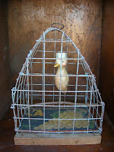 Bird in Cage  2009